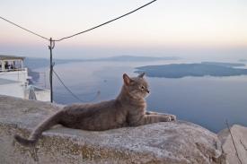 Sunset at Imerovigli